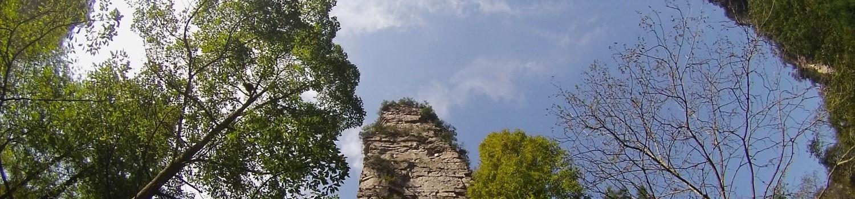 Image6-21